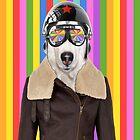 best dog work like aviator by benyuenkk