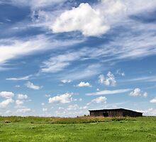 Prairie Skies by Tracy Friesen