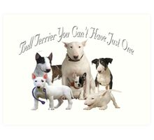 Bull Terrier Can't Have Just One Art Print