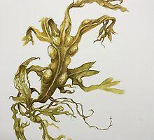 Bladderwrack Seaweed by evon ski