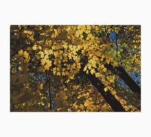 Golden Canopy - Look Up to the Trees and Enjoy Autumn - Horizontal Right Baby Tee