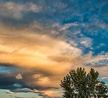 Light Storm On The Plains by nikongreg