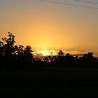 Sunrise by cathywillett