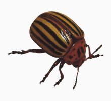 Beetle Bug One Piece - Short Sleeve