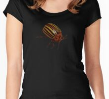 Beetle Bug Women's Fitted Scoop T-Shirt
