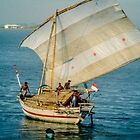 Buginese Boat by Werner Padarin