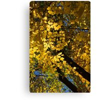 Golden Canopy - Look Up to the Trees and Enjoy Autumn - Vertical Right Canvas Print