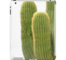 Cactus - Arizona iPad Case/Skin