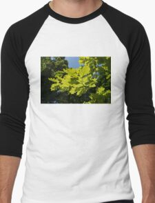 More Than Fifty Shades Of Green - Sunlit Oak and Linden Patterns - Up Left Men's Baseball ¾ T-Shirt