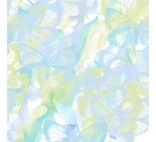Lite Shades of Blue Butterflies  Photographic Print
