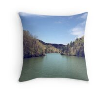 Safe Passage Throw Pillow