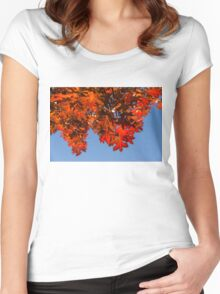 More Than Fifty Shades Of Red - Glossy, Leathery Oak Leaves in the Sunshine - Downward Women's Fitted Scoop T-Shirt
