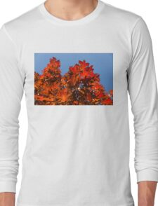 More Than Fifty Shades Of Red - Glossy Leathery Oak Leaves In The Sunshine - Upward Long Sleeve T-Shirt