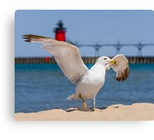 Flapping Gull And Lighthouse Canvas Print