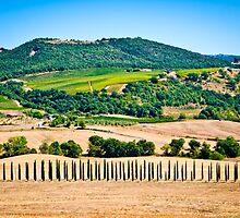 Tuscany landscape 1. by PhotoPerocsenyi