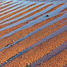 beach stripes by Manon Boily