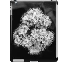 Suction [iPad case] iPad Case/Skin