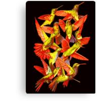 Hummingbird Dance in Sharpie (FireBird Edition) Canvas Print