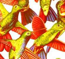 Hummingbird Dance in Sharpie (FireBird Edition) Sticker