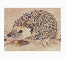 Hedgie, the African Hedgehog Kids Tee