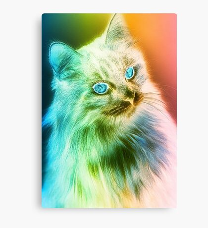 Ambience Cat Canvas Print