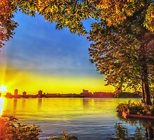 Sun bursts through Fall by Owed to Nature
