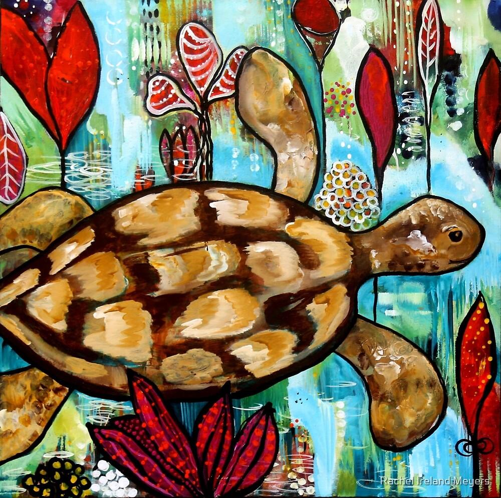 Gracie's love for Turtles by Rachel Ireland-Meyers