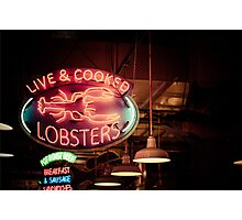 Live and Cooked Lobsters Photographic Print