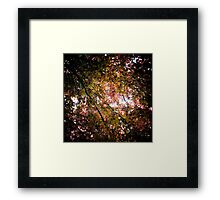 A New Place to Read Framed Print