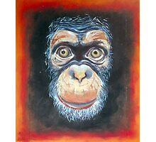 Chimp Chump Photographic Print