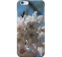 Cherry blossoms April 2014 iPhone Case/Skin