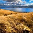 Droughty Hilltop in Autumn - Hobart, Tasmania by clickedbynic