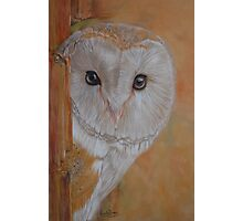 Barn Owl By Nicole Barros Photographic Print