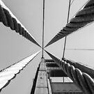 Golden Gate Cabels by Radek Hofman