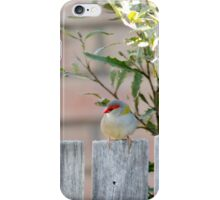 Firetail on the fence iPhone Case/Skin