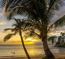 Sunset Palms by TomGreenPhotos