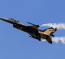 F-16 Low-Speed Pass by TomGreenPhotos