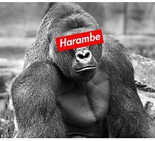 Harambe x Box Logo Photographic Print