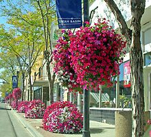 Street of Flowers, Vernal, Utah, USA by Margaret  Hyde