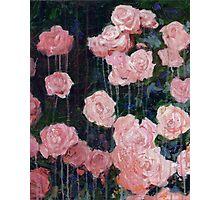 Be Adored - Original Rose Still Life Photographic Print