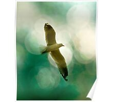 Flight of the Seagull Poster
