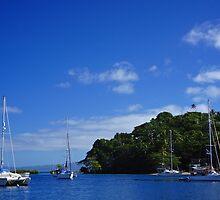 Savusavu Yacht Club by D-GaP