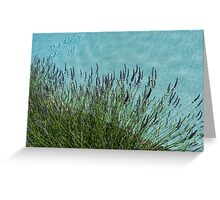 Summer Aromatherapy at the Fragrant Edge of the Swimming Pool Greeting Card