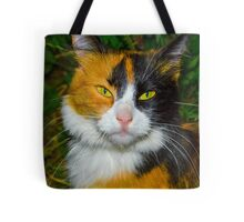 Red-black-and-white cat Tote Bag