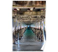 Under The Pier Poster