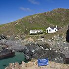 Kynance Cove by Steve plowman
