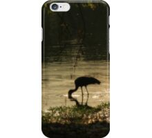 Bird - Zambia iPhone Case/Skin
