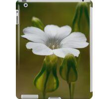 tiny white flower iPad Case/Skin