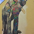 Elephant graffiti by heinrich