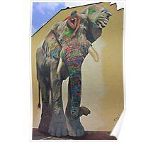 Elephant graffiti Poster